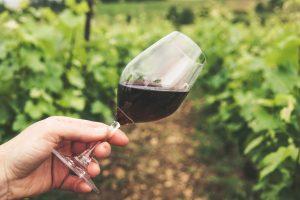 spaanse wijnen